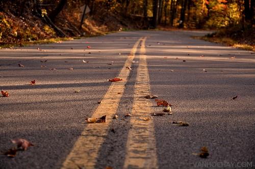 Bạn sẽ chọn lối đi đã được người ta đi mãi mà thành đường, hay lối đi không có dấu chân người?